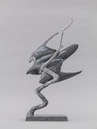 NICK BIBBY   Peregrine (Lightning Bolt)