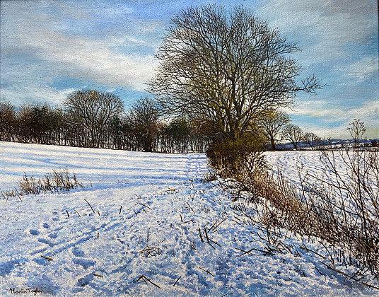 MARTIN TAYLOR | Snow Headland