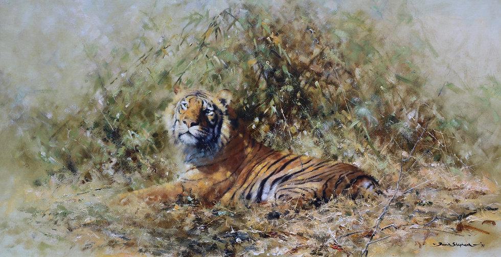 Glorious Tiger