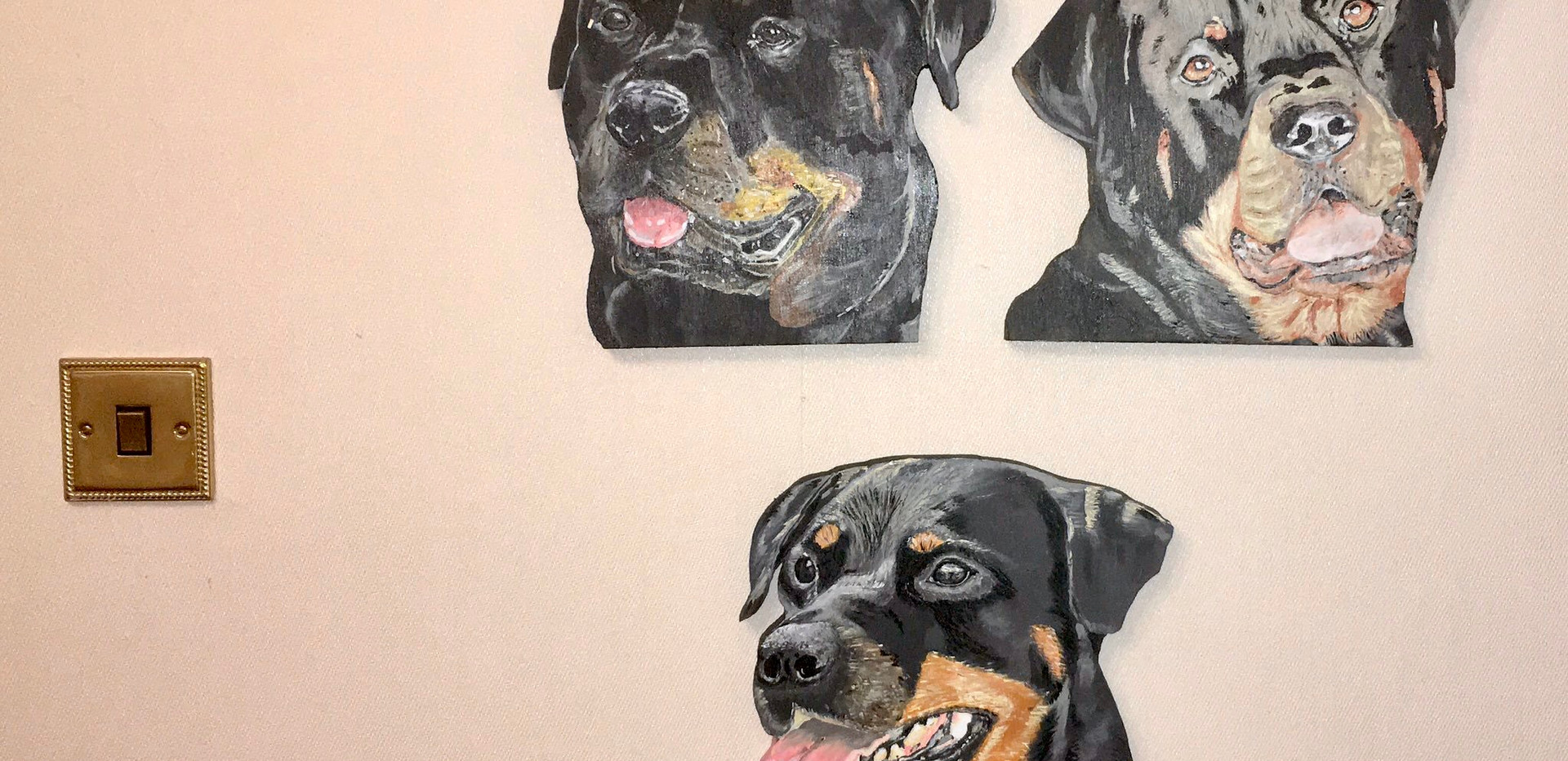 Rottweiler commissions