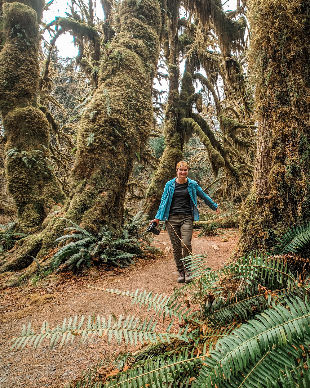 Hall of Mosses Trail in the Hoh Rain Forest at Olympic National Park in Washington during our PNW road trip.