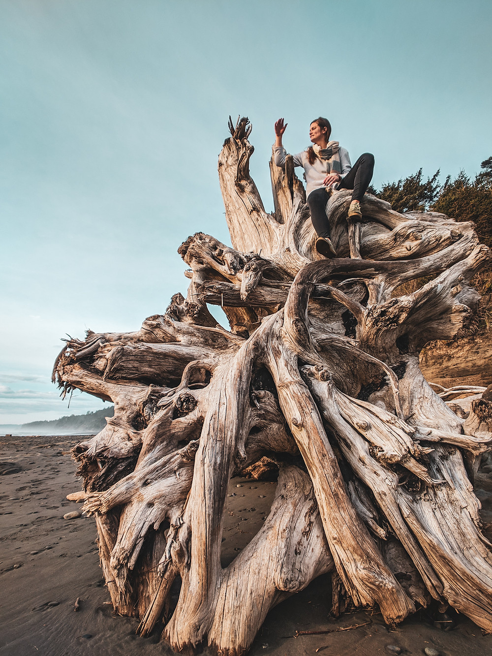 Exploring Kalaloch Beach 4 near Forks, Washington during our PNW road trip.