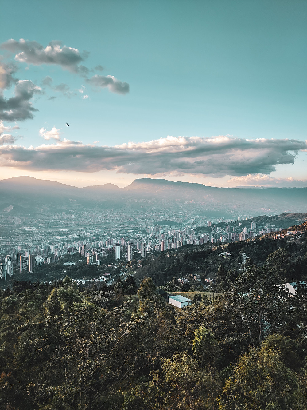 A view of Medellín from an overlook.
