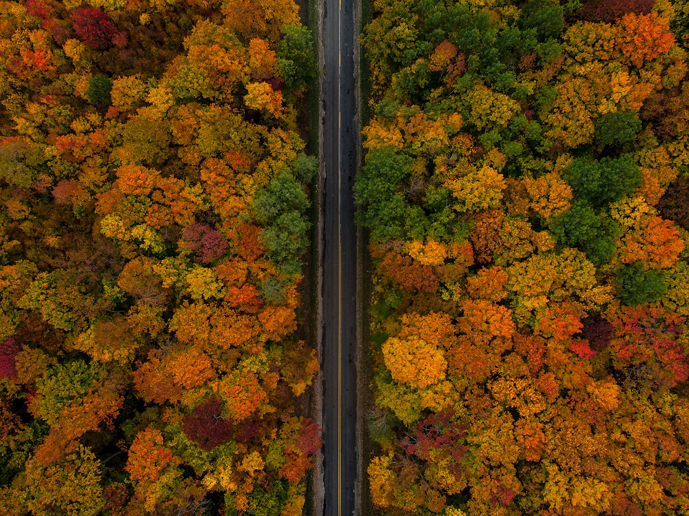 The fall season brings lots of changes in Northern Michigan