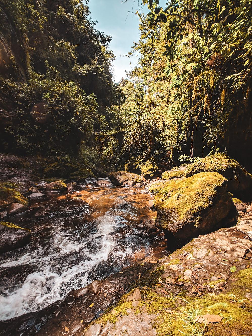 River in Jardin, Colombia.