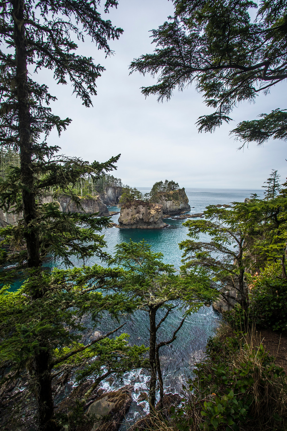 View from Cape Flattery in northwest Washington during our roadtrip to the PNW.