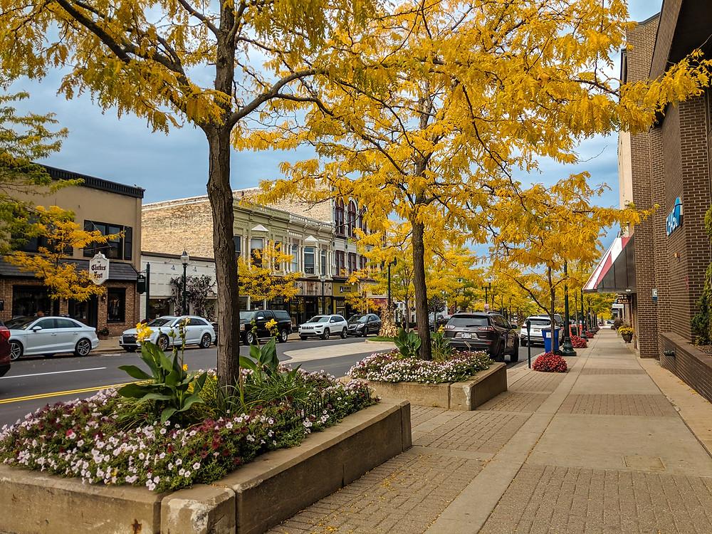Downtown Petoskey, Michigan in the fall.