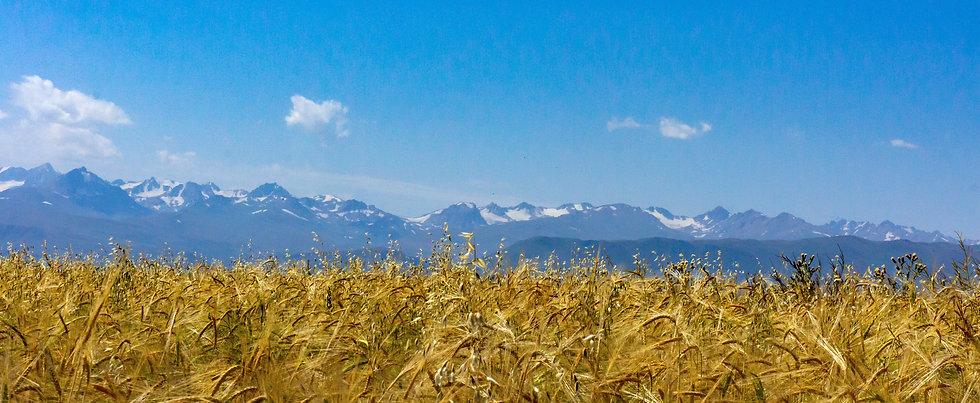 kirgisistan-unsplash.jpg