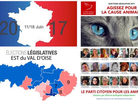 5 questions aux candidat(e)s de l'Est du Val d'Oise. Pierre VALESA (AEI - 8e circo)
