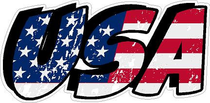 USA Vinyl Sticker