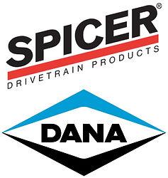 Dana-Spicer.jpg