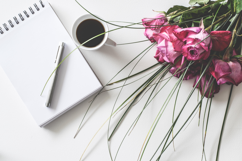 Creative & Book Coaching (Confidential)