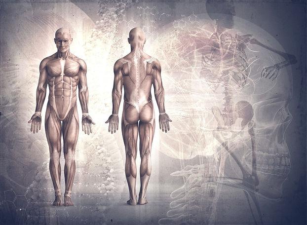 Kort.X Gehirntraining - Konzentration un
