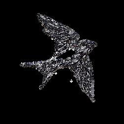 andorinha voando transp.png