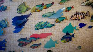 theway-fishsculpture-dedebrownphotograph