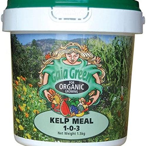 Kelp Meal 1.5Kg