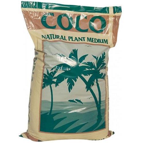 Cana Coco