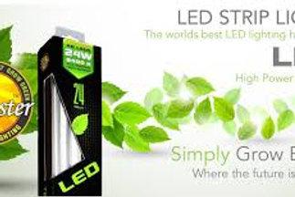 Sunblaster LED Bars