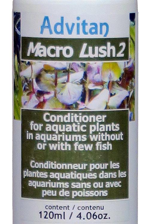 Micro Lush2