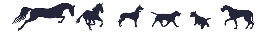 Premium Canine and Equine Supplements