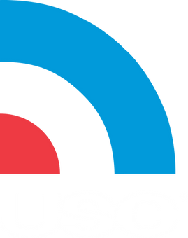 USC_Logo_CMYK_4c (1).png