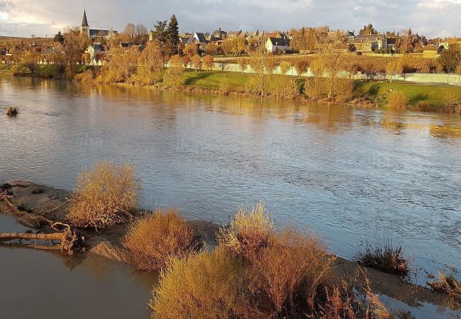 Une vue de la Loire, fleuve sauvage