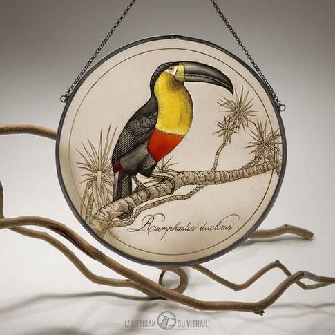'Le Toucan' -  - Vitrail à suspendre, peintures faites mains