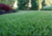 Lawn and Pest Control Serices