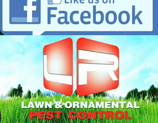 LR Lawn & Ornamental Pest Control Services
