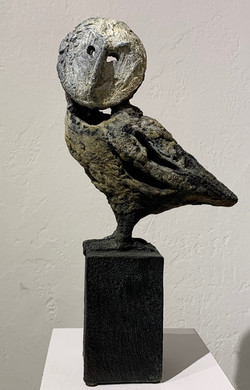 Bujo (Small Owl)