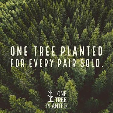 Arbor trees.jpg