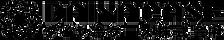 daiyacase logo.png