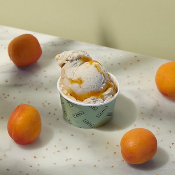 Apricot2.jpg