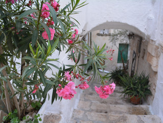 The Ost' with the Most:  Espressino Travel's Six Essential Experiences in Ostuni, Puglia