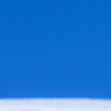Gentoo Penguim Antarctica