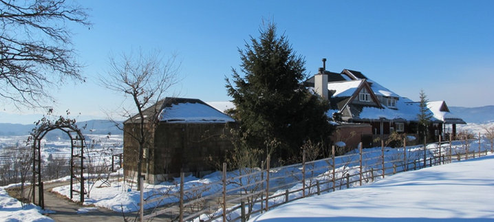 Join a Winery Tour to St.Cousair Winery