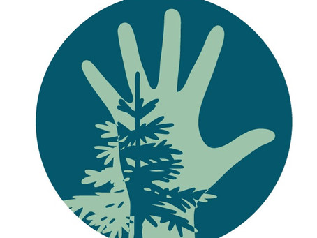 We're Growing! Now Hiring Part-Time Forest School Educators