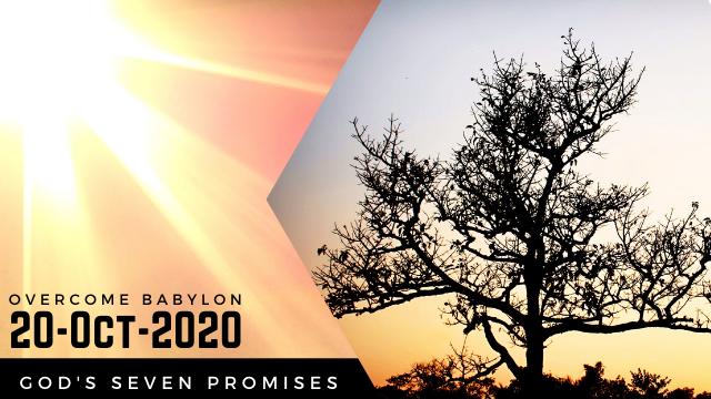God's Seven Promises (IF You Overcome Babylon...)
