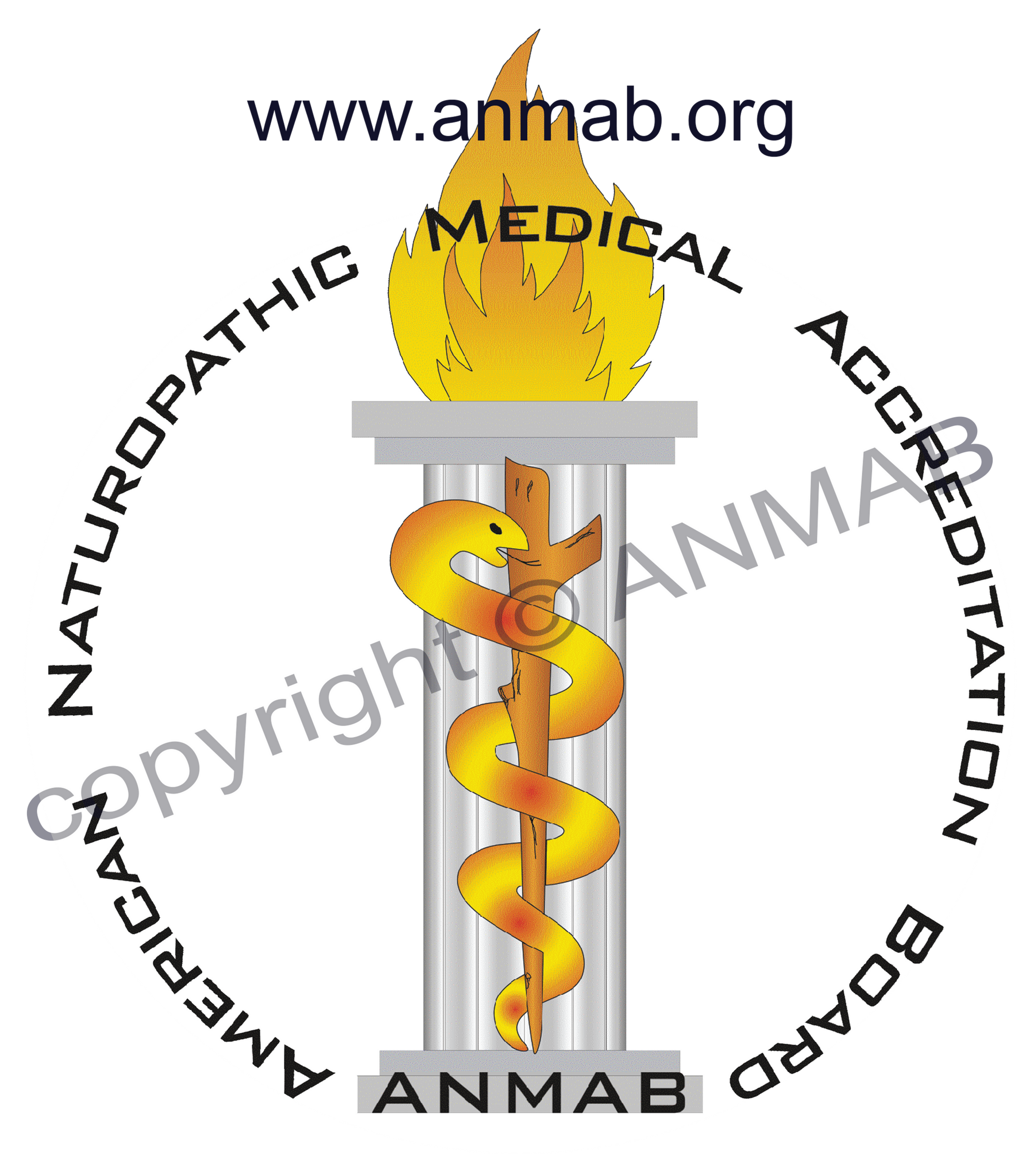 ANMAB | Accredited Programs