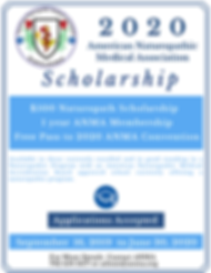 _flyer 2020  ANMA Scholarship.png