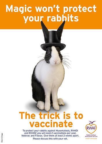 Magic-wont-protect-your-rabbits-vaccinat