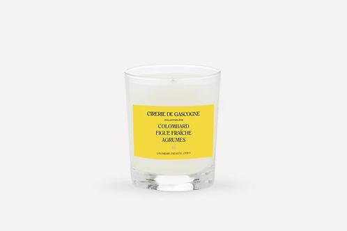 Bougie colombard- figue fraiche- agrumes Cirerie de Gascogne