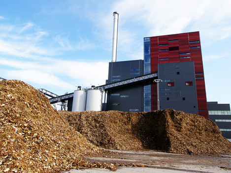 Another Power station converts to Biomass