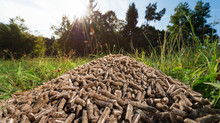 What makes Biomass Energy a great Investment?