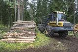 Wood harvesting Canada