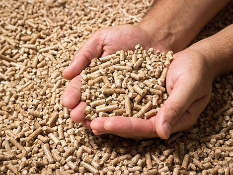 Demand for Biomass is set to Double