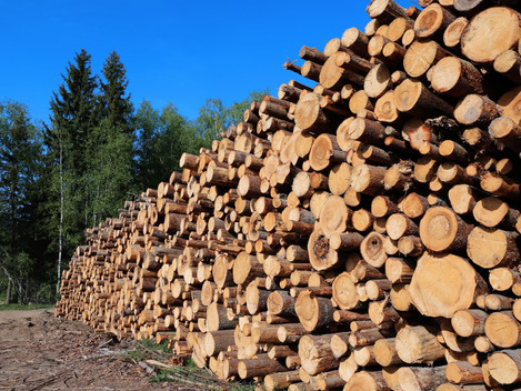 Growth of Biomass as an energy source is set to continue.
