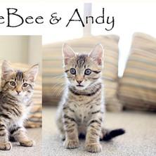 CeeBee and Andy.jpg