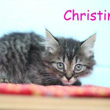 Christine.JPG