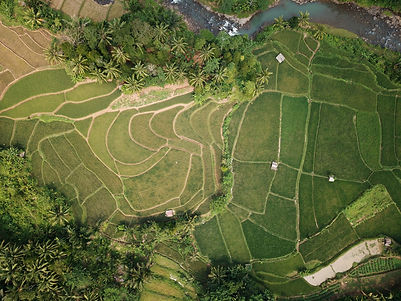 aerial-shot-agriculture-countryside-1081